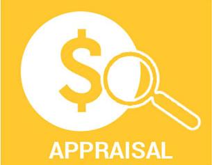 Rug Appraisal